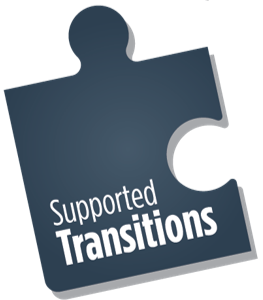 supported transitions puzzle piece