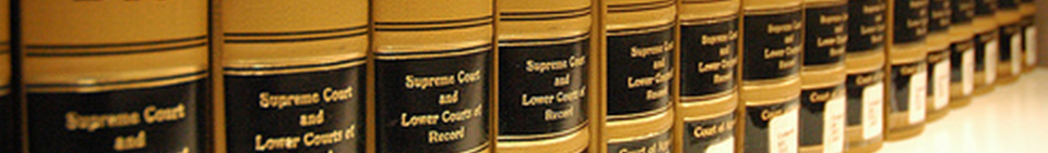 Illinois State Education Law and Policy Journal Logo